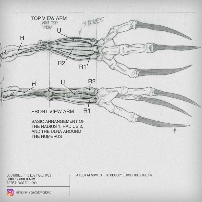 0088 vykker arm