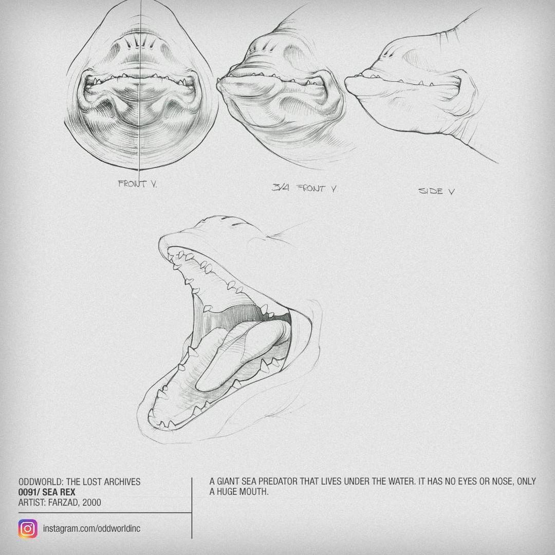 0091 sea rex.jpg