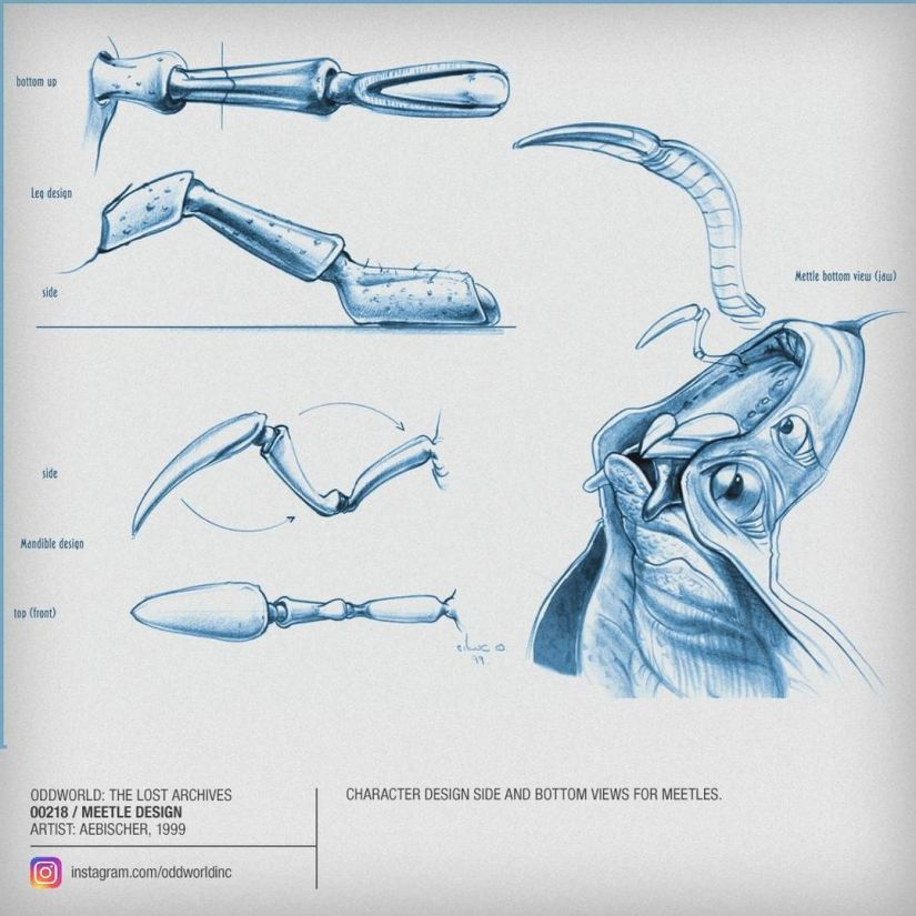 00218 Meetle Design
